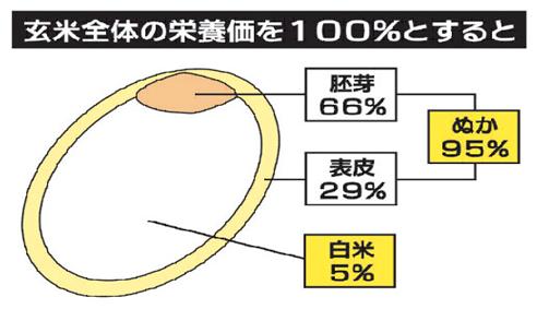 玄米の栄養価