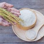 子どものごはん 玄米って食べさせてもいいの?