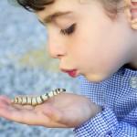 【保育士が教える】「命の大切さ」ってどうやって子どもに教えればいい?