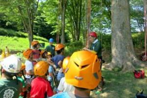 treeing_160723-02-320x213