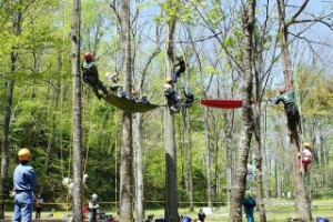 treeing_160723-05-320x213