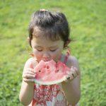 「夏野菜」食べ過ぎはよくない?!旬のものを食べる時の落とし穴